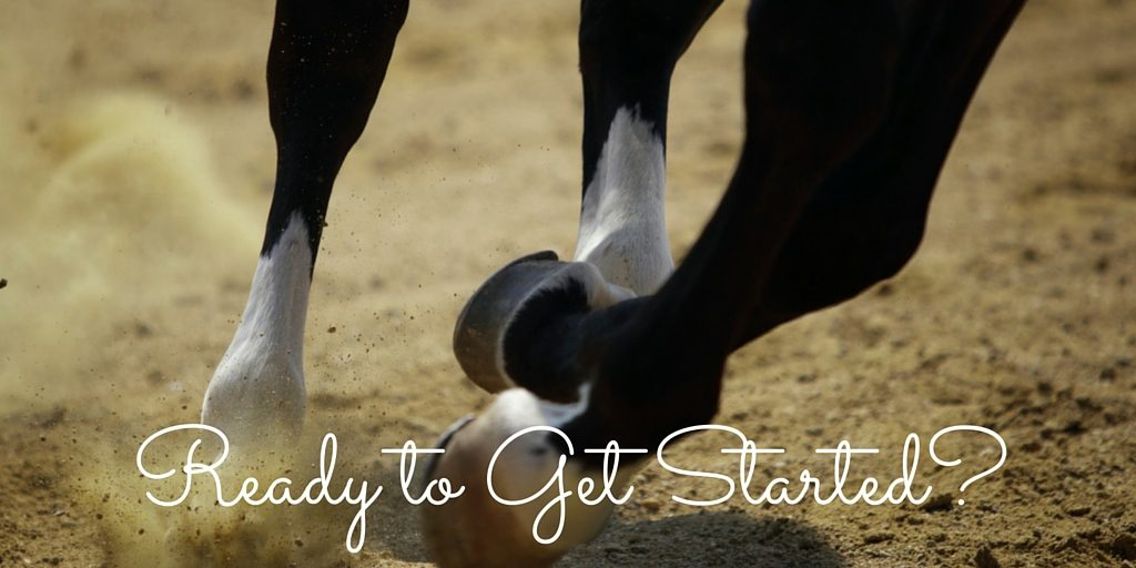 Get Started Horse Health Consultation