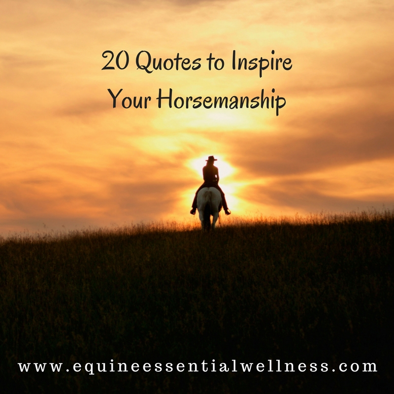 Motivational And Inspirational Quotes Photos: 20 Quotes To Inspire Your Horsemanship