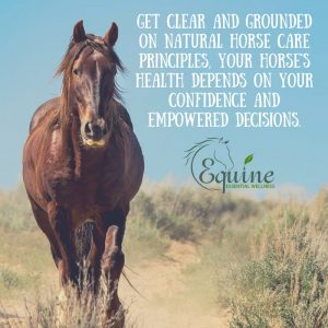 Natural Horse Health Principles