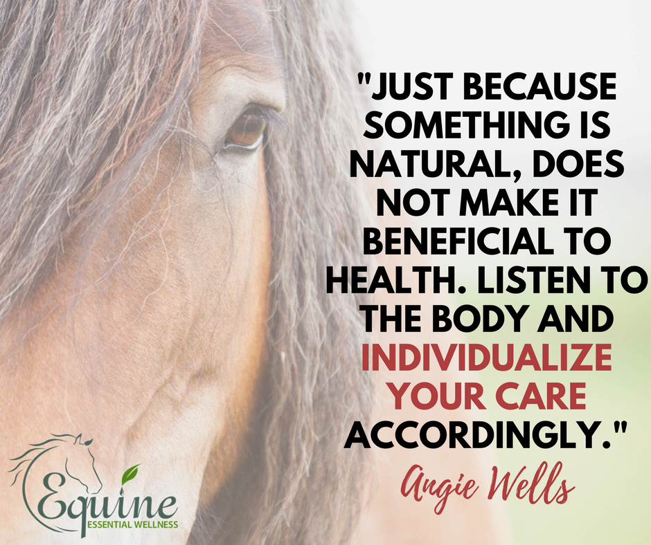 individualize your horse supplement