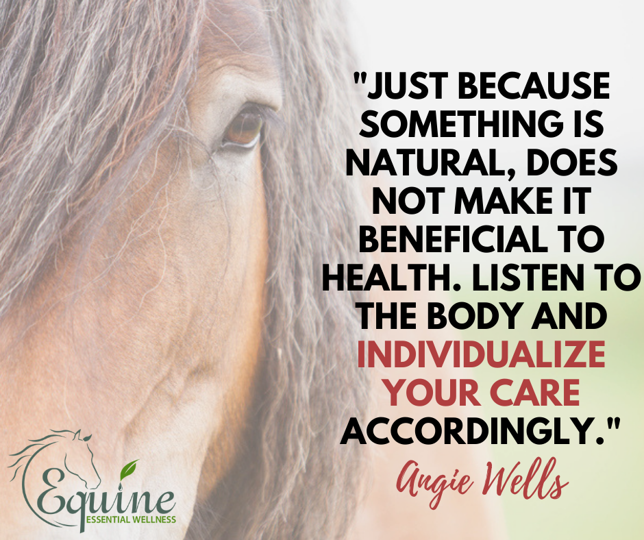 Natural Horse Health and Kidney Problems in Horses